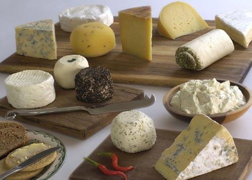 Фермент для приготовление сыра в домашних условиях