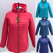 Женские куртки отправка к Вам в течении 1-3 дня заказ прямо со склада есть новинки
