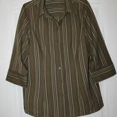 Котоновая красивая блуза-рубашка Maximе