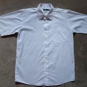 Белая рубашка Tu на 11 лет,рост 146, в отличном состоянии