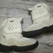 Термо ботиночки Chicco утеплитель шерсть