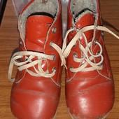Ботинки, Деми