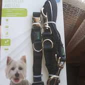 поводок с ошейником для собак Zoofari размер с