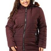Куртка женская поздняя осень с капюшоном размеры 46-54 пудра, вишня, черный