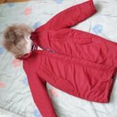 Зимова куртка Dasti. Заміри в описі