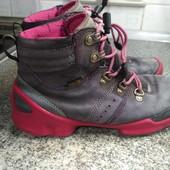 Натуральный нубук, ессо кроссы-ботинки 35 р стелька22 см