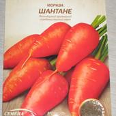 Відбірне насіння моркви. Читайте опис