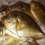 Рыба лот 500 грам вомер х к,