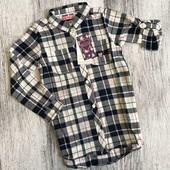 Cool Club отличная яркая удлинённая котоновая рубашка р.128