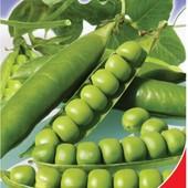 Семена Гороха Шесть недель или Альфа (10г). Ультраскороспелый!!! Пачка на выбор.