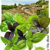 """Прованские травы.Смесь базиликов """" Дольче вита"""" 700 семян!!! 8 сортов в упаковке!!!"""