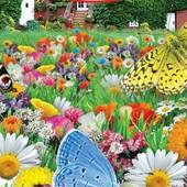 """Газон Цветущий """" Луговые бабочки"""". Смесь трав и душистых цветов!!! Большая проф. упаковка 30 грамм!"""
