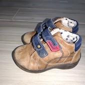 Деми ботинки кожа натуральная 14,5см