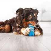 Игрушка косточка для ухода за зубами и полостью рта для собак Zoofary