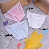 Качественные трусы/трусики на девочку р.2/3 г. Упаковка 3 шт.