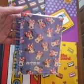 Любой блокнот Кite( на выбор один) .Большой формат А 6.80 стр.Картонная обложка,качество-супер