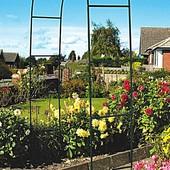 Садовая арка, для вьющихся растений! для роз, клематиса и прочих вьюнов